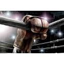 "Школа Бокса ""OLYMP"" - Маарду. Инфо-купон"